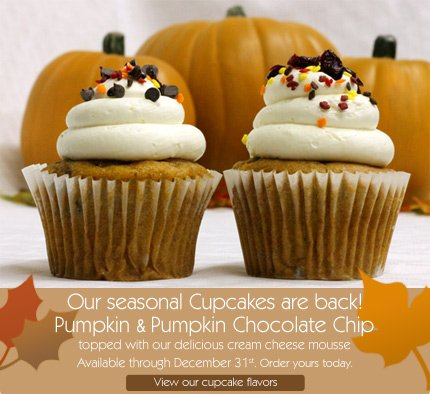 Our seasonal Cupcakes are back! Pumpkin & Pumpkin Chocolate Chip